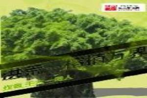 洪荒之榕植萬界
